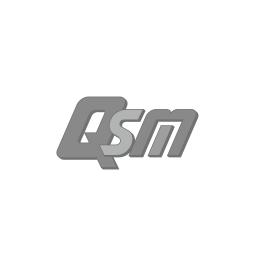 logo qsm